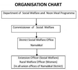 DSW - Organisational Chart Image