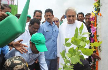 Green Mahanadi Mission
