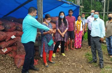 Turmeric seed Rhizome verification at Lathao and Namsai by the DLTC for Horticulture FPO on 20th May2020.