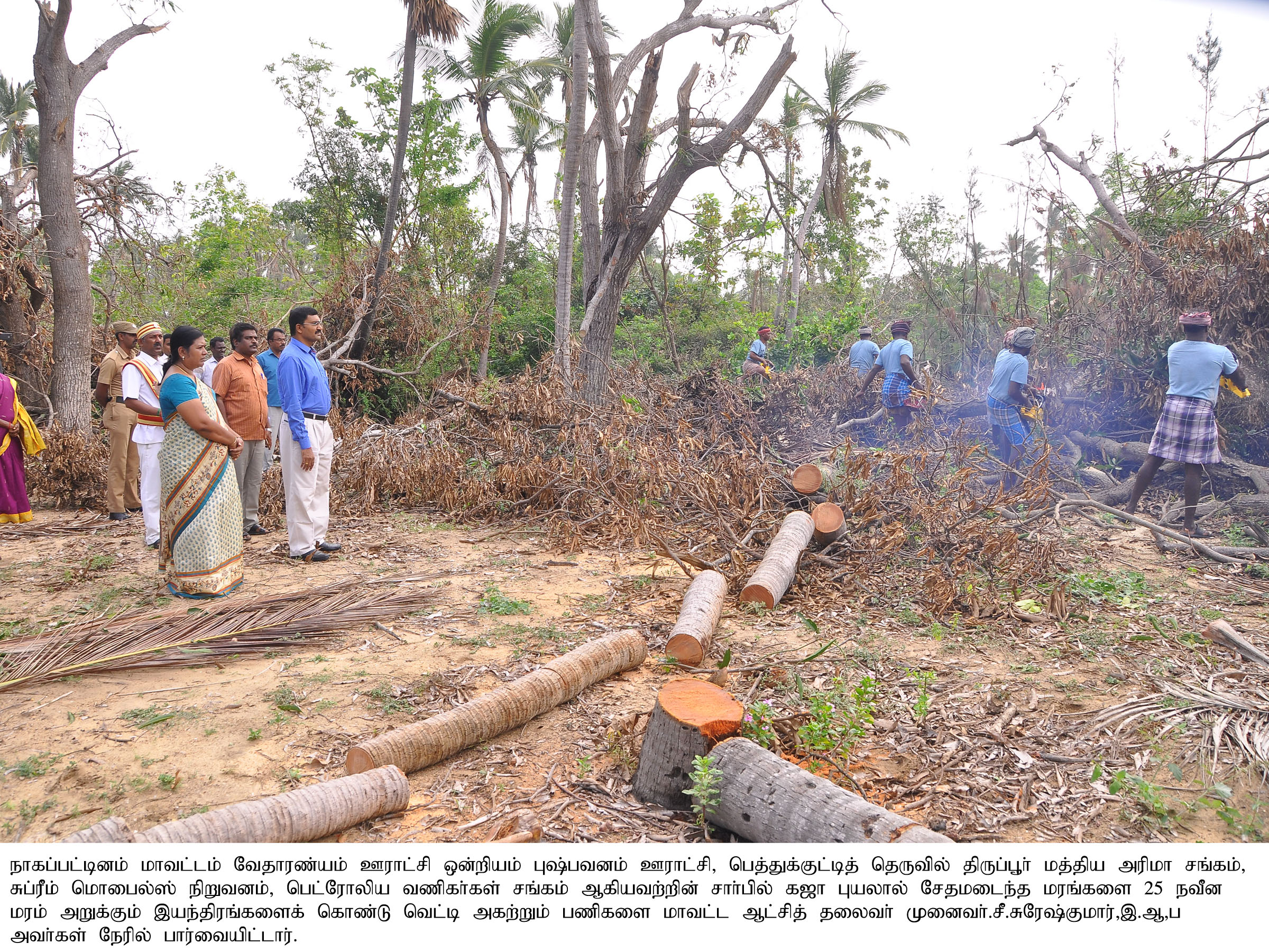 Collector Inspection- Gaja Cyclone Restore Works 24-12-18