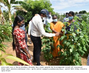 HORTICULTURE INSPECTION NEWS & PHOTOS