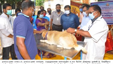 World Rabies Day – Special Veterinary Camp – 28.09.2020