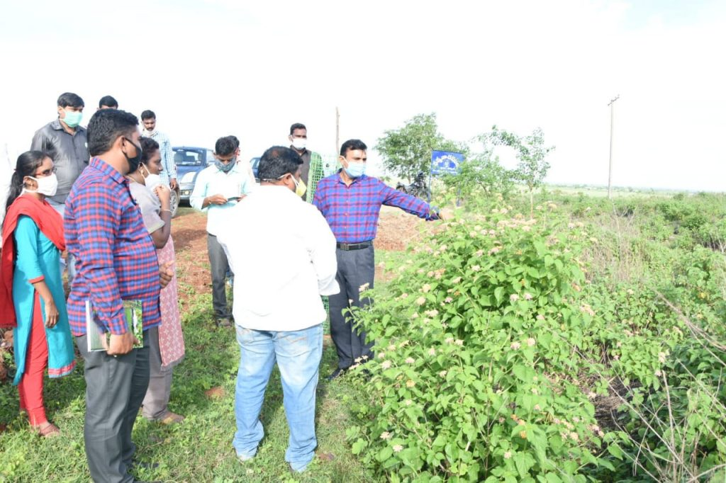 Haritha Haram Programme-By District Collector