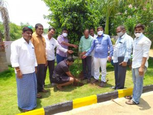 District Tribal Ofifcer, visited Gp Ibrahimpet mdl. Banswada with Apo, sarpanch &jps Distributed home stead plants