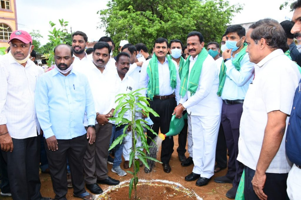 The District Collector was present at the planting program in wards 8 and 32 of Kamareddy town