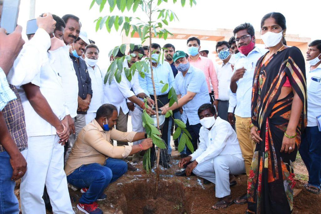 State Rural Development Department, Principal Secretary Garu visited the palle prakruthi vanam at the Sadashivanagar Mandal Center
