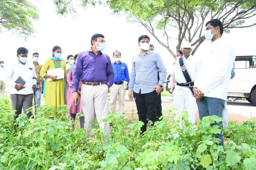 District Collector Inspected the Palle Pragathi Works