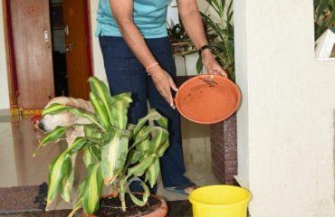 Parisarala Parishubratha program by District Collector