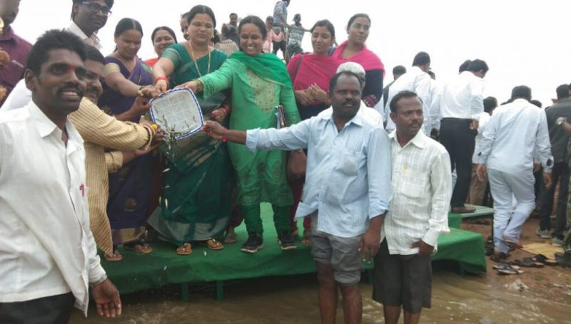 Fisheries Production at Kamareddy District