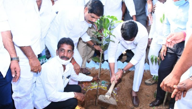 Crore tree planting program as part of the Green Challenge