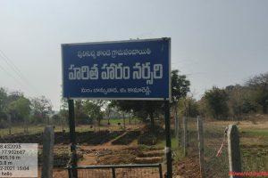 SI.No.19 GP Pulikucha Thanda,Mandal.Banswada.