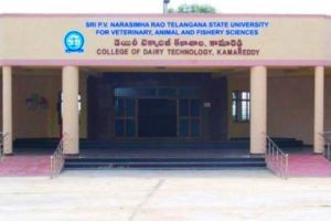 College of Dairy Technology
