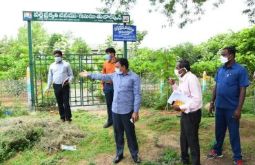 The District Collector Inspected the Plants at the Avenue Plantation, a Palle Prakruthi Vanam in the Bibipet Mandal and in the village of Tujaulpur.
