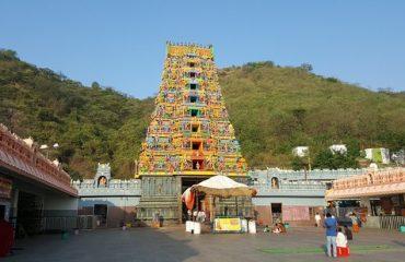 Gopuram Long View