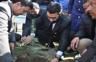 DC Launched Planted Drive