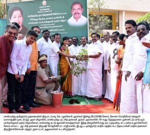 cm function tree planting