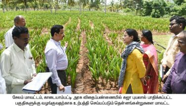 The District Collector Inspection 2