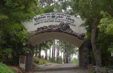 Genetic Heritage Garden