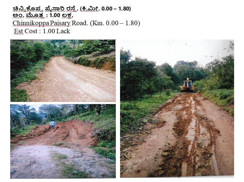 Chinnikoppa Paisary Road. 1