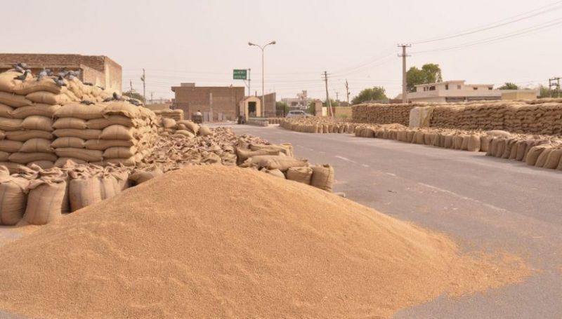 Wheat-Mandi