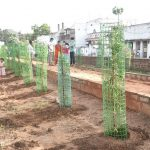 16-09-20 District collector Attended Plantaion at Poolbagh municipal park 9