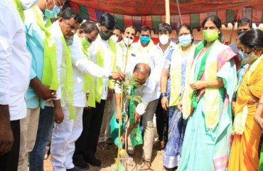 Public Representatives doing plantation
