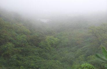 Saputara Photo - Green Saputara