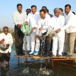 District Collector leaving the fishes into Pond