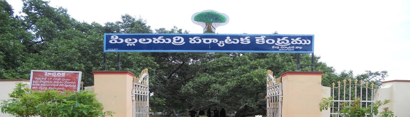 Pillalamarri Entrance, Mahabubnagar
