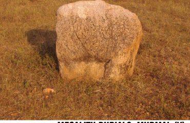 Megalith Burials