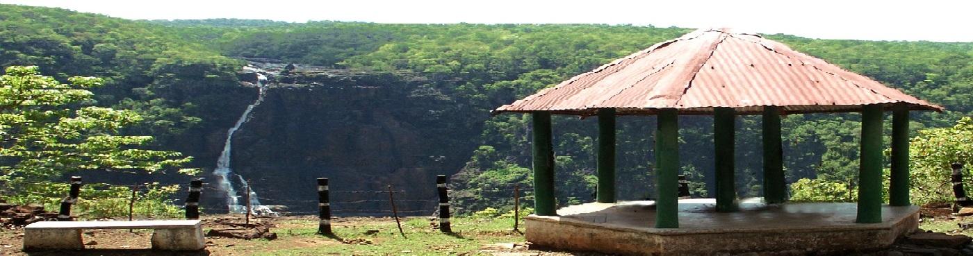 Barehipani View