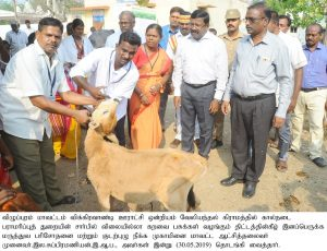 Animal Husbandry Department Health Campaign3