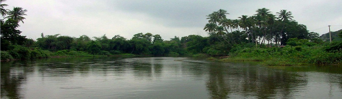 Vennaru River Needamangalam1