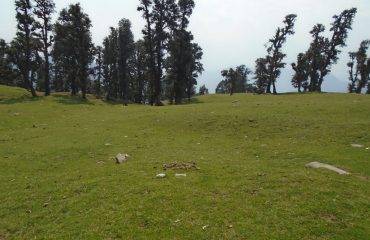 Chopta View