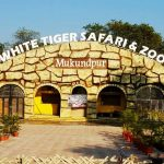 Tiger_Safari