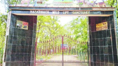 hazaribag wildlife Sanctuary