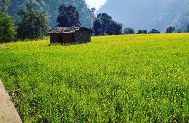 valley of Champawat