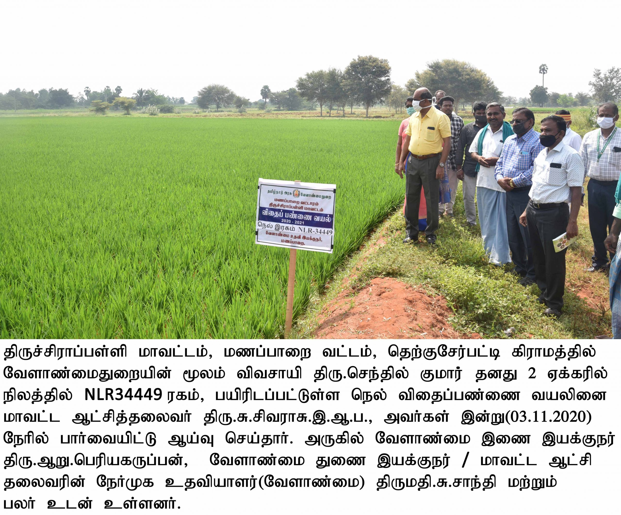 District Collector Inspected the Agriculture and Horticulture Department Development Works at Manapparai Panchayat Union