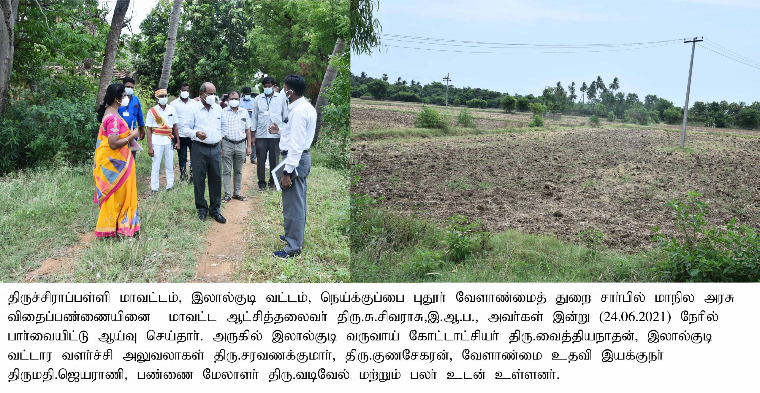 District Collector Inspect Seed Farm at Lalgudi Taluks on 24-06-2021