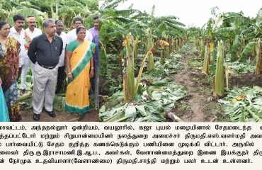 Gaja Cyclone Affted Area -Inspected by Hon'ble BCW Minister