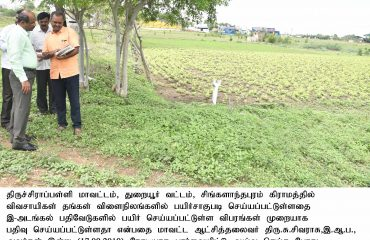 District Collector inspected the Crop registration using the e-Adangal App