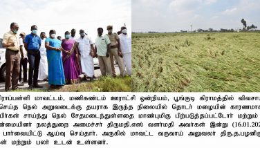 Hon'ble Minority Welfare Minister Inspected the Crop Damages on 16.01.2021