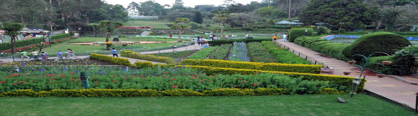 The Kodaikanal Garden