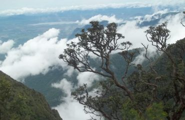 Hill View, Kodaikanal