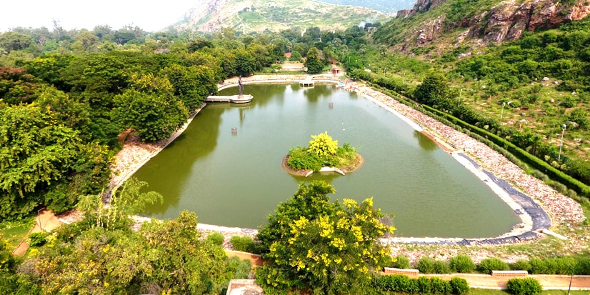 View of the lake and the greenery surrounding it.