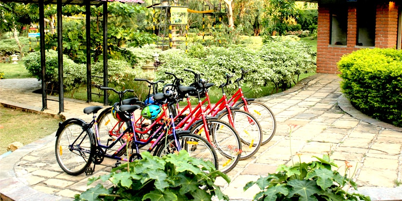 Cycles lined up in the cycling section of the park.