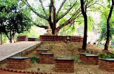 पाण्डु पोखर के आस-पास बैठने की जगह