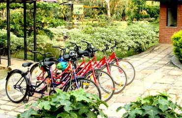 Cycles lined up in the cycling section of the park