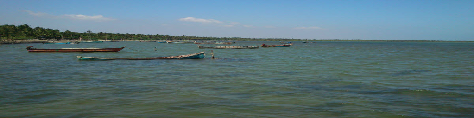 Devipattinam - Fishing boats