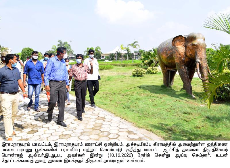 COLLECTOR INSPECTION_HORTICULTURE_10/12/2020